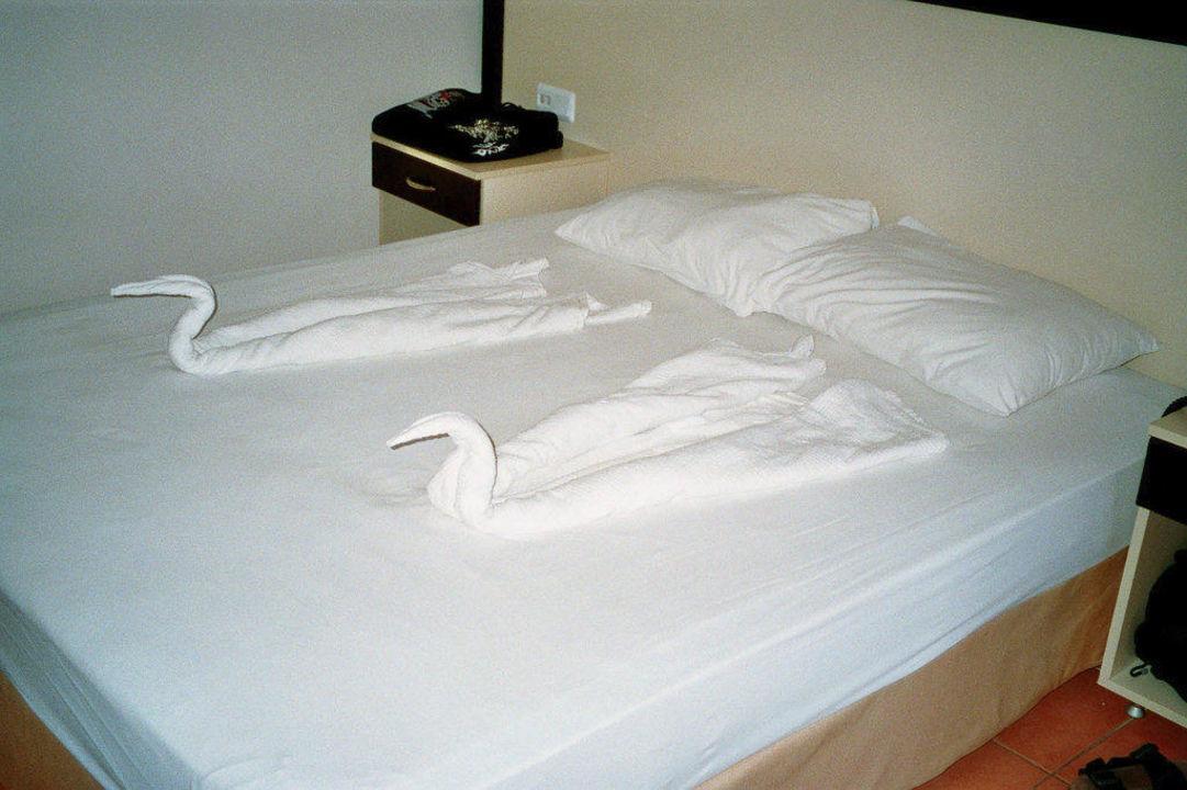 Bettdeko von den Putzfrauen - Schwäne Hotel Helios