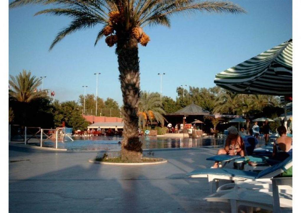 Fulya Pool - Kamelya World lti Kamelya Collection Hotel Selin Resort & SPA