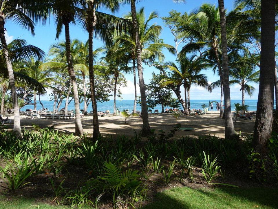 Strand Senator Puerto Plata Spa Resort (im Umbau/Renovierung)