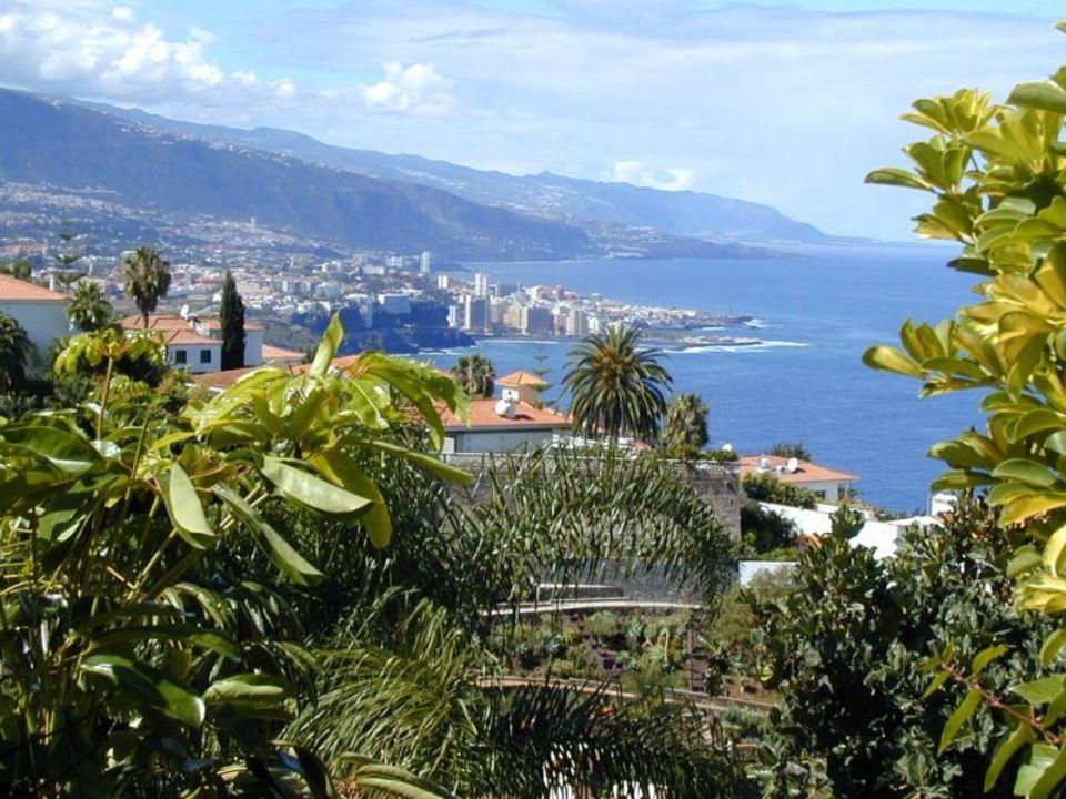 Blick vom Pool des Hotels La Quinta Park Suites Hotel La Quinta Park Suites