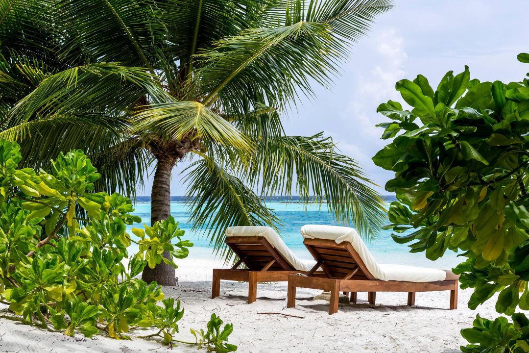 Hotel Vakarufalhi Island Resort