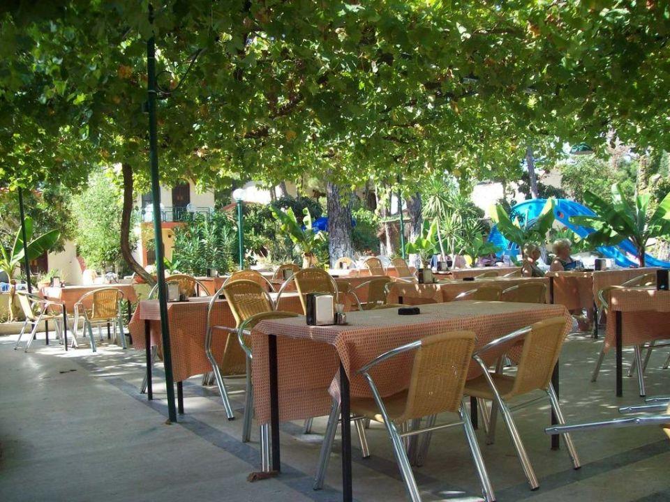 Essen unter Weinreben Hotel Mari