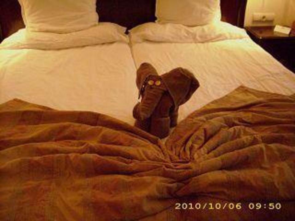 Vom Zimmermädchen! Hotel Grifid Bolero