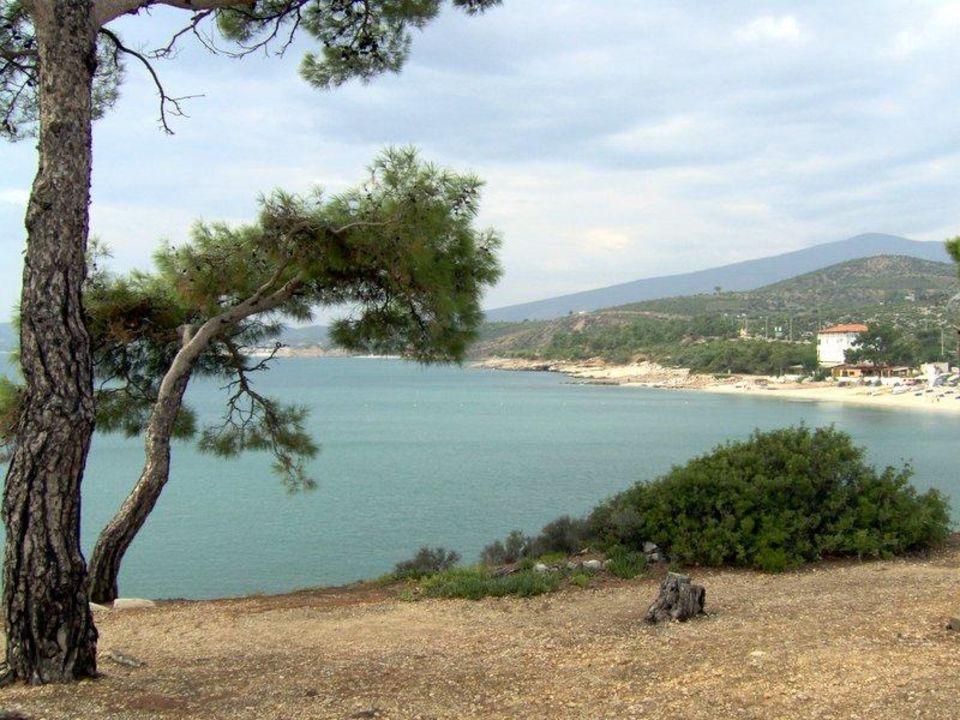 Die Küste mit Strand Pefkari Hotel Esperia