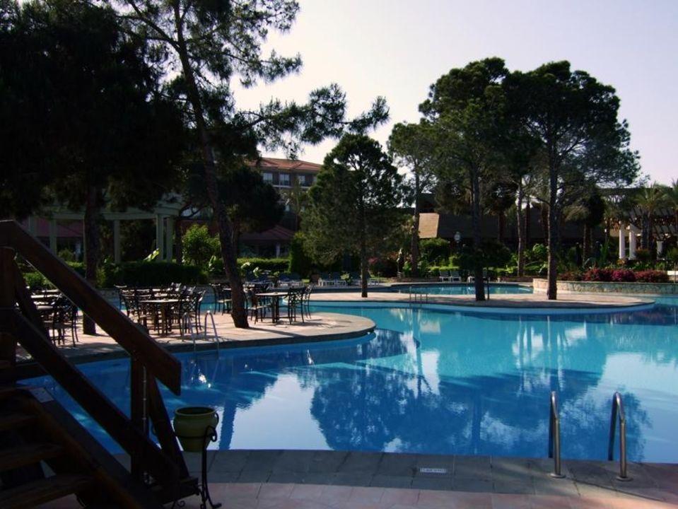 SwimUp Pool Bar & Pool IC Hotels Green Palace