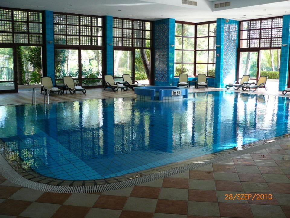 Pool Paloma Foresta Resort & Spa