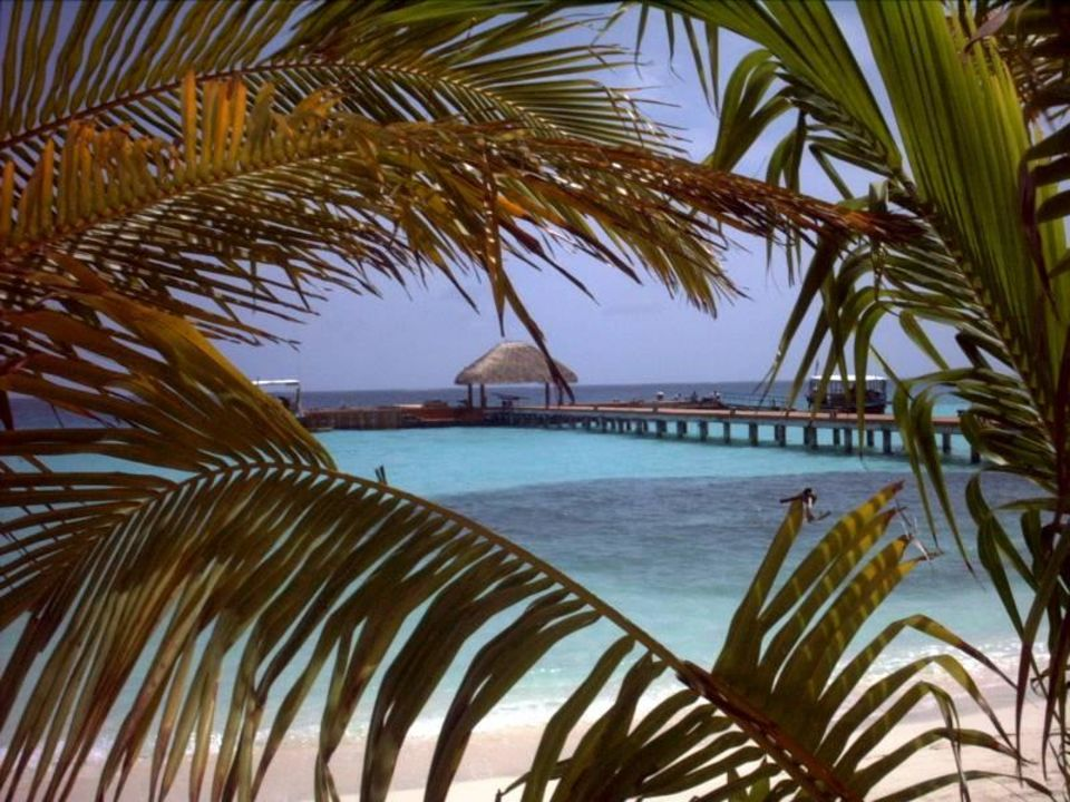 Blick auf den Anlegesteg Maayafushi Resort