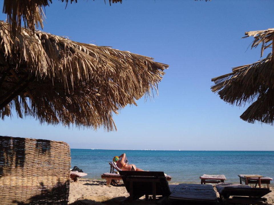 Sehr schöner Strand mit viel Platz Caribbean World Resorts Soma Bay