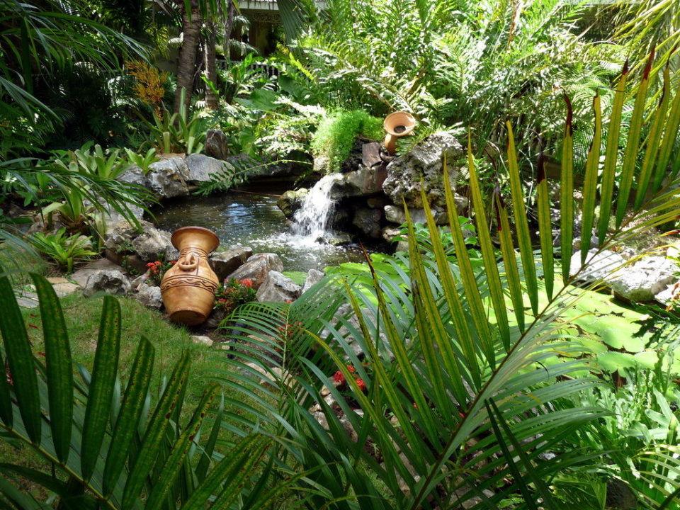 Brunnen mit kleiner Grünanlage an der Cocktailbar Grand Bahia Principe El Portillo