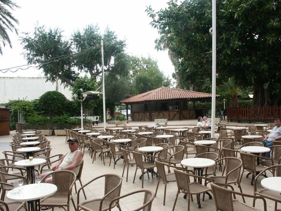 Gartenanlage Hotel Roc Boccaccio