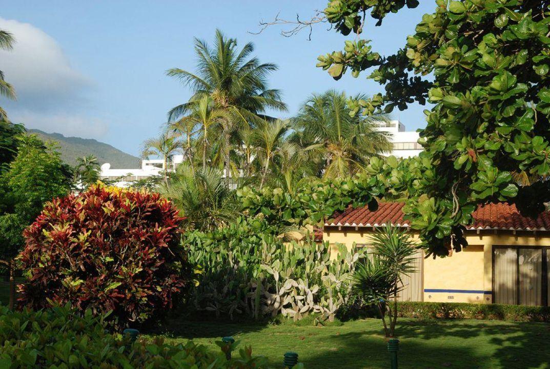 Ogród i bungalowy Hotel Hesperia Playa el Aqua Beach