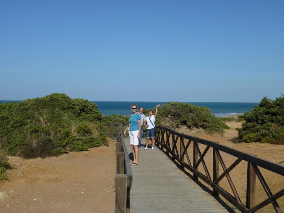 Steg durch die Dünen zum Strand IBEROSTAR Andalucia Playa