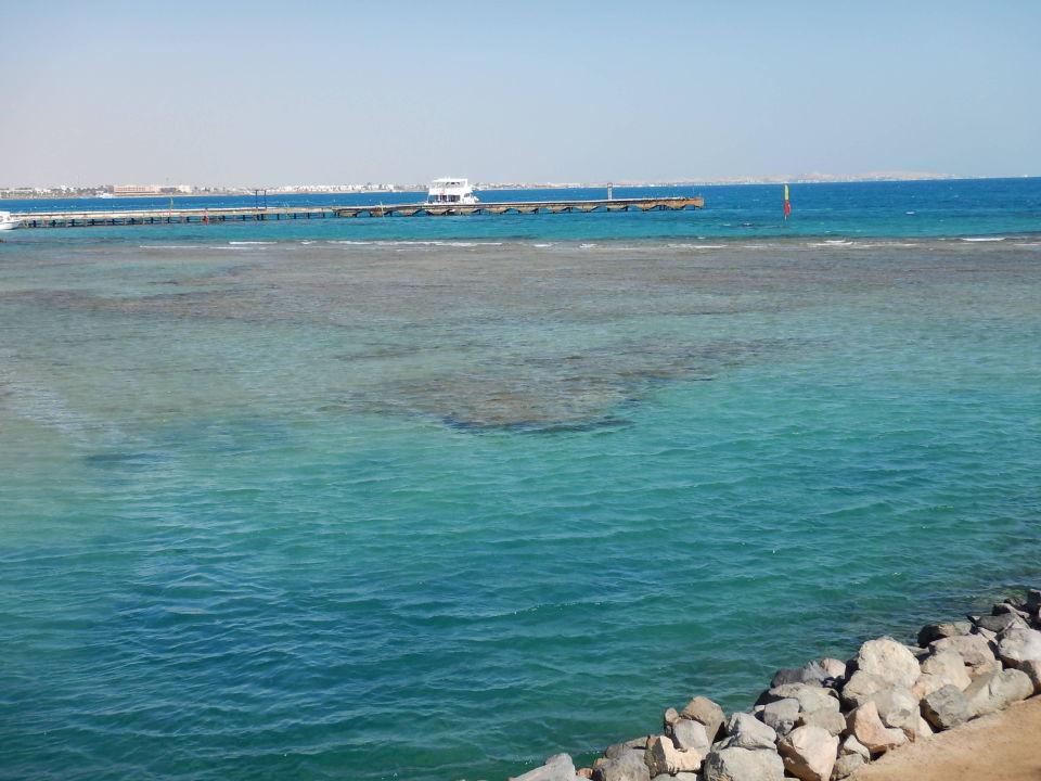 Hausriff Desert Rose Resort Hurghada Holidaycheck Hurghada