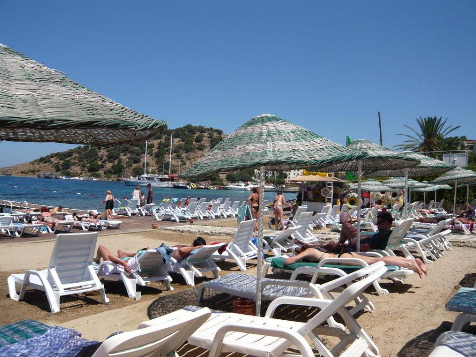 La plage Hotel Cactus Mirage Family Club