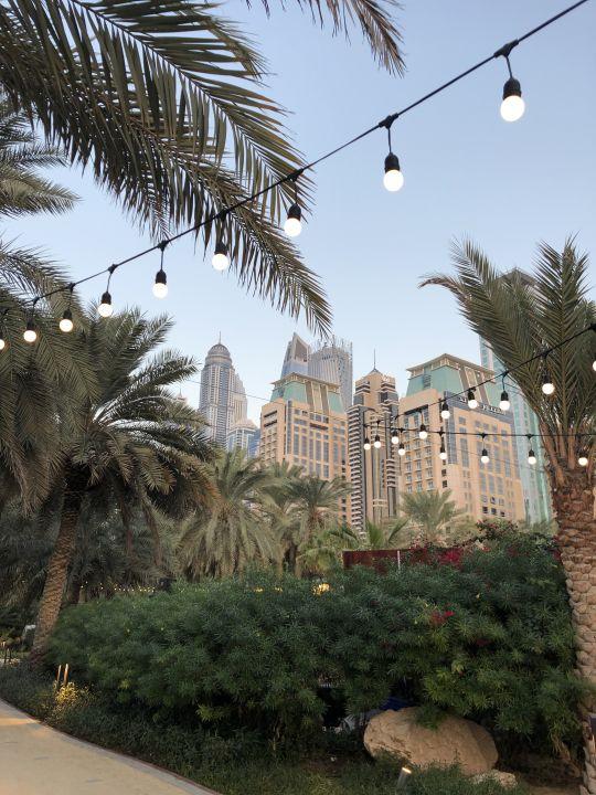 Garten Le Royal Méridien Beach Resort & Spa Dubai