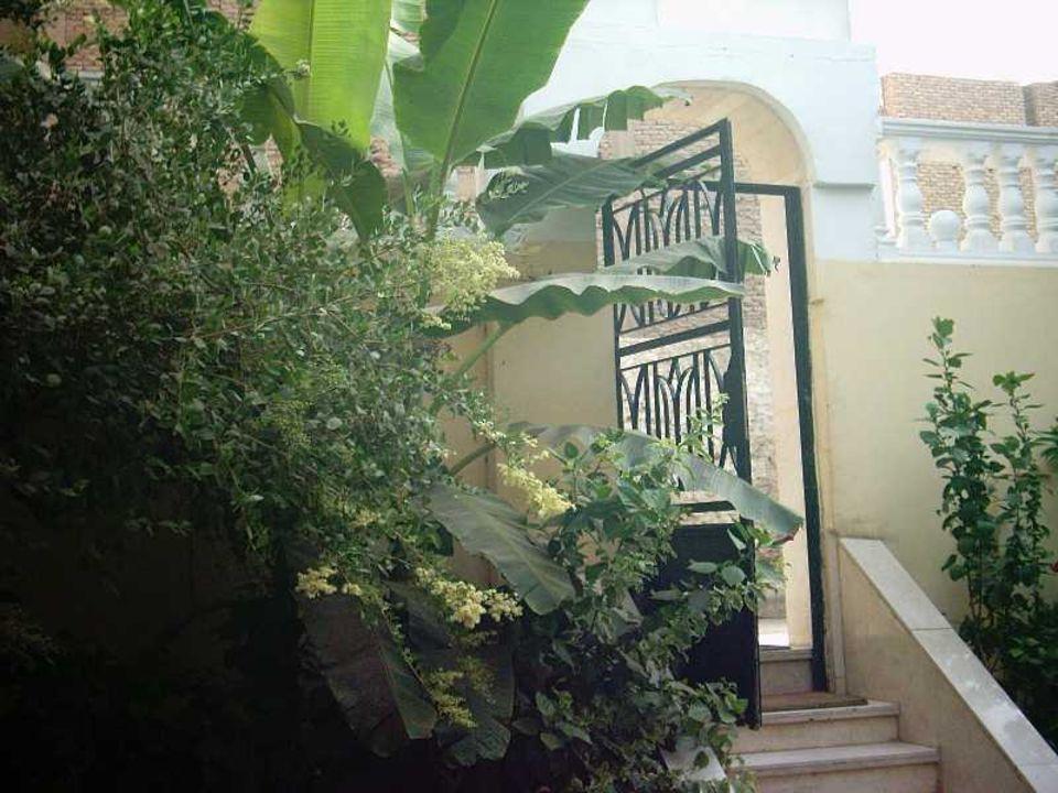 Frühstücksgarten im Little Garden Hotel Hotel Little Garden