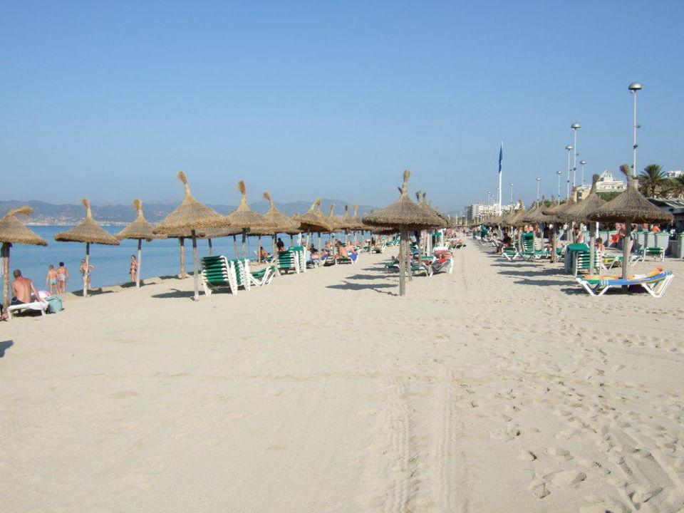 Strand playa de palma hotel riu festival in platja de for Design hotel mallorca strand