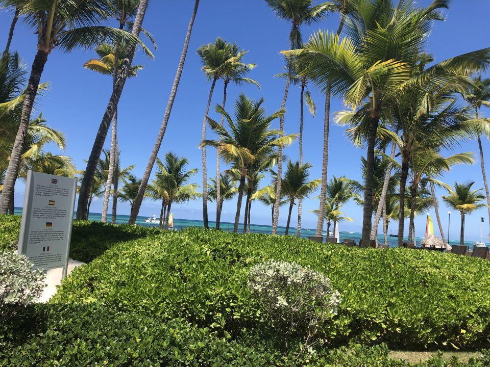 Ausblick Secrets Royal Beach Punta Cana - Adults only