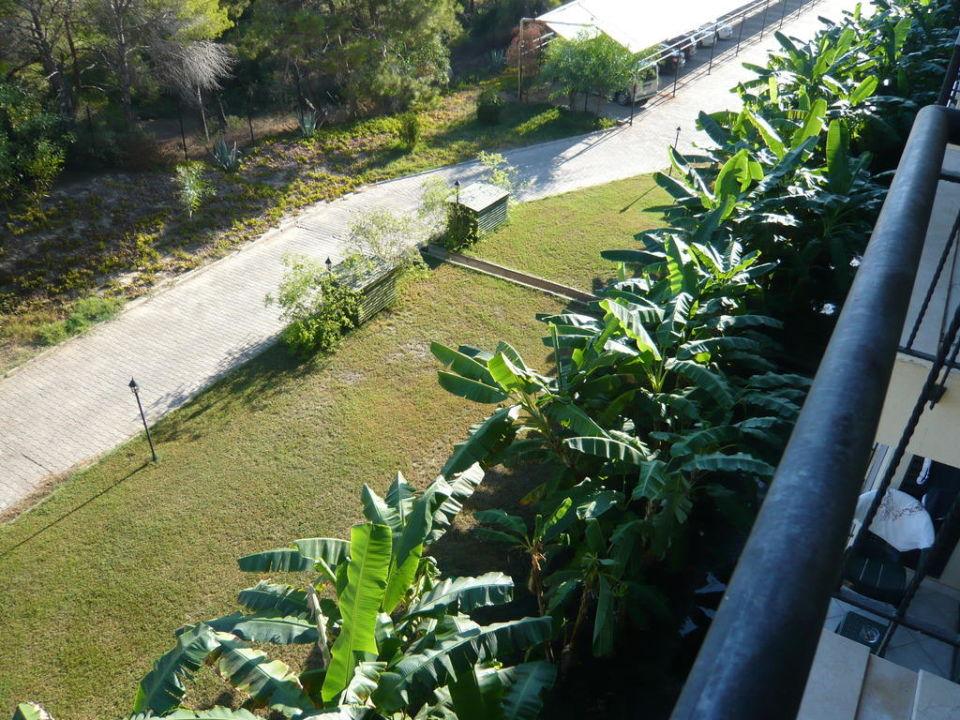 Aussicht Landseite rechts Nashira Resort Hotel & AQUA-SPA