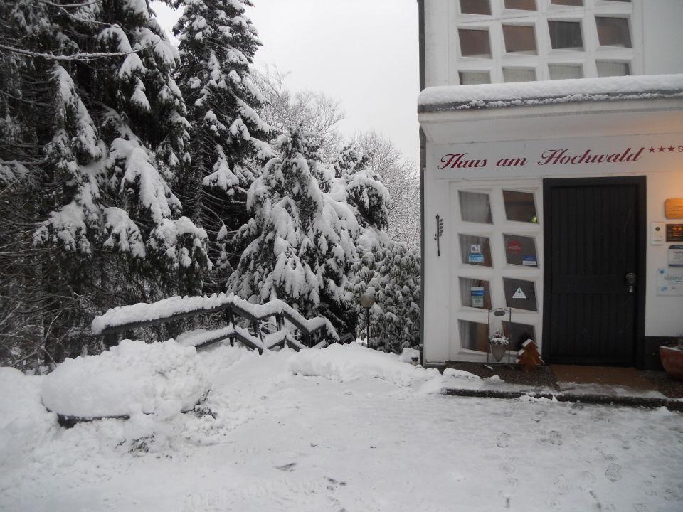 """""""Eingangsbereich"""" Hotel Haus am Hochwald Goslar"""