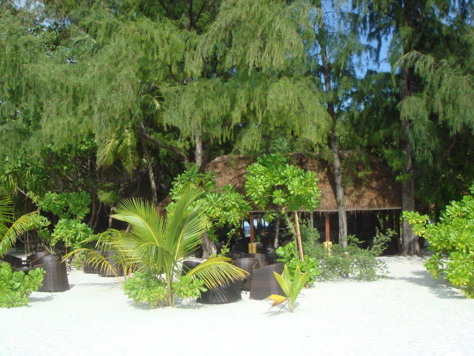 Der Coffeshop Maayafushi Resort