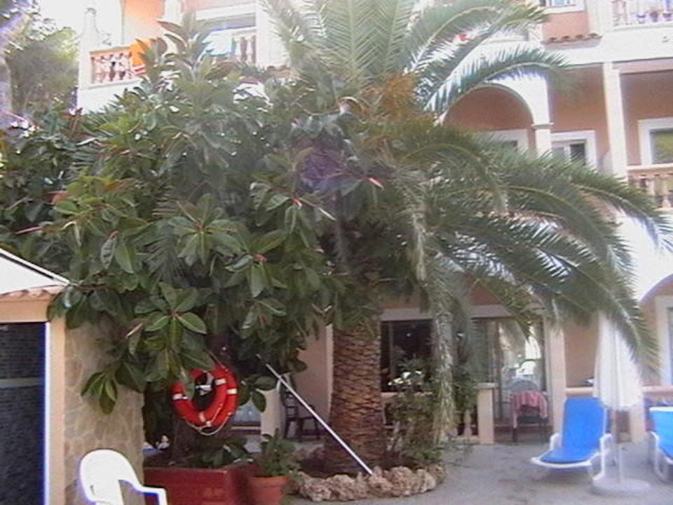 Am Pool Hotel Cala Gat