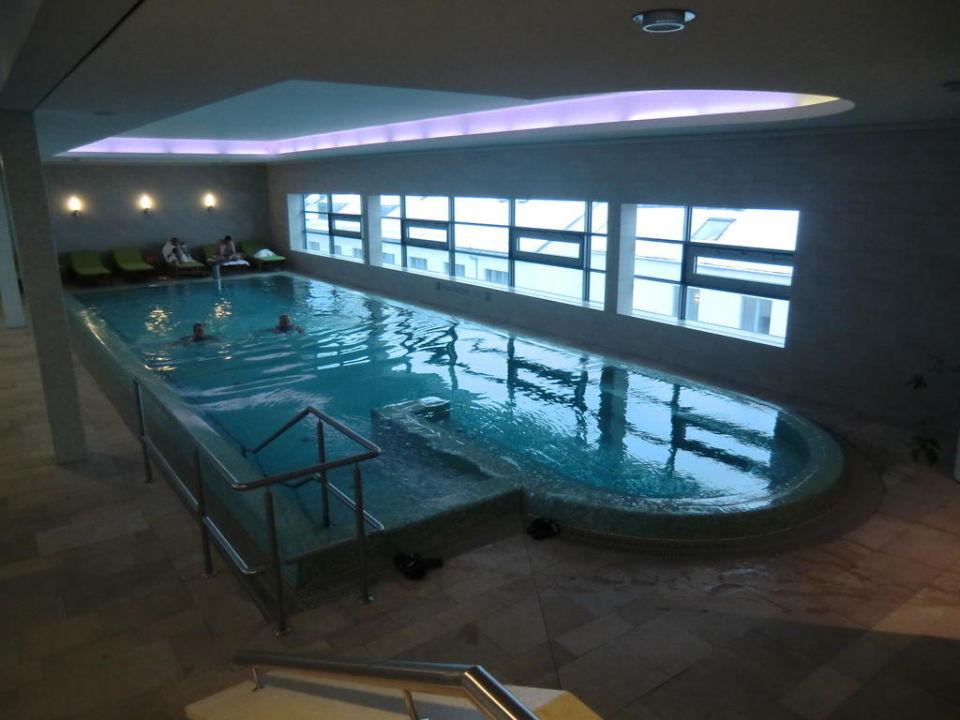 Pool Unter Dem Dach 30 Grad Warm Hotel Elbresidenz An Der Therme