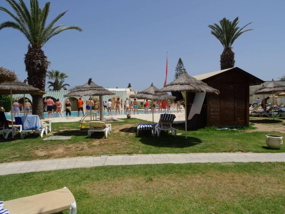 jardin autour de la piscine hotel seabel alhambra beach golf spa port el kantaoui. Black Bedroom Furniture Sets. Home Design Ideas