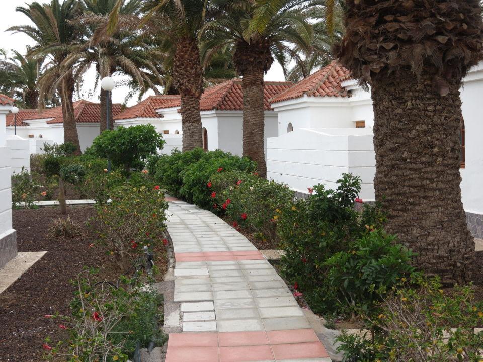 Weg am bungalow e suite hotel jardin dorado maspalomas holidaycheck gran canaria spanien - Bungalows jardin dorado ...
