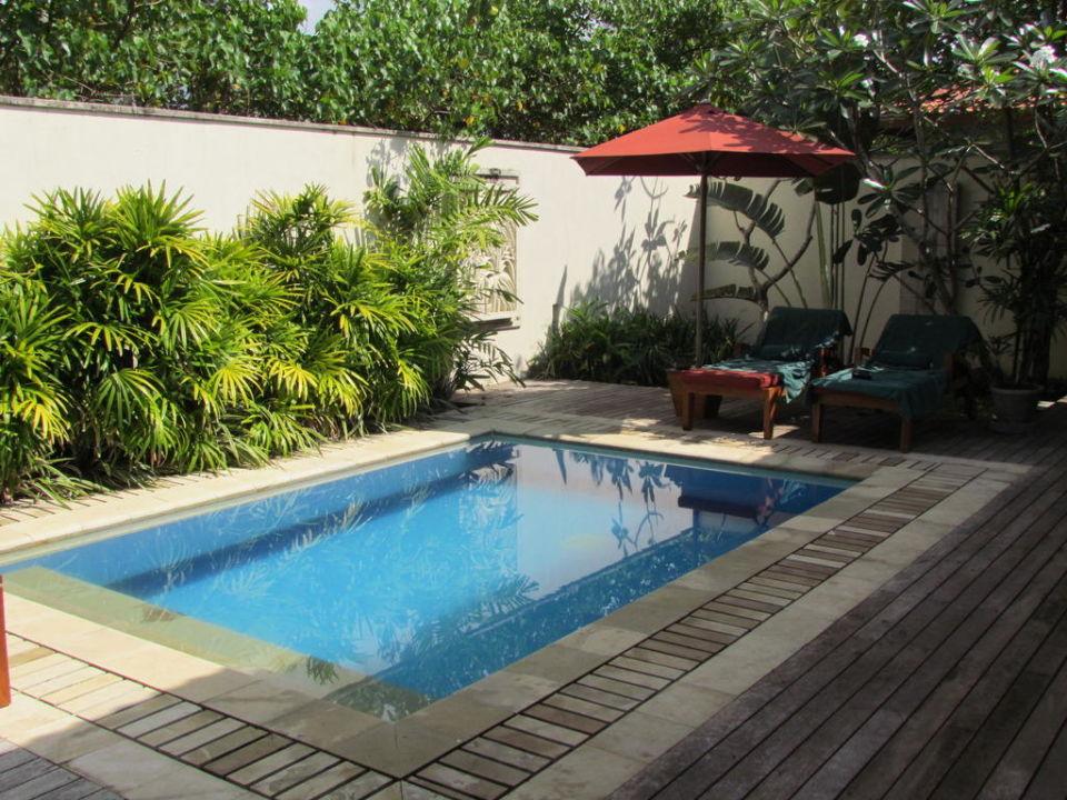 der kleine pool im garden pavillion serene pavilions in. Black Bedroom Furniture Sets. Home Design Ideas