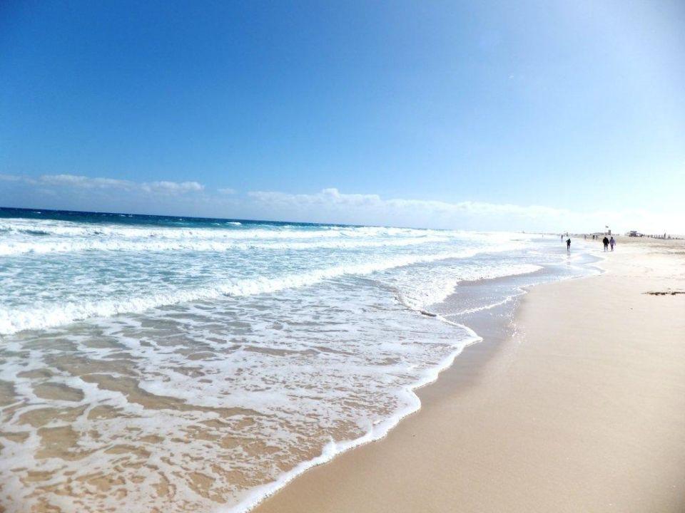 Traumhafter strand hotel riu oliva beach village for Riu oliva beach village