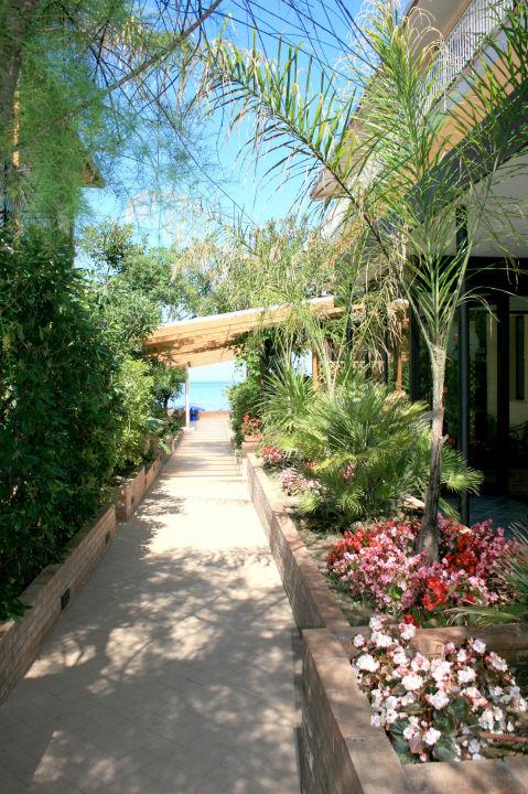 Viale  Hotel La Darsena