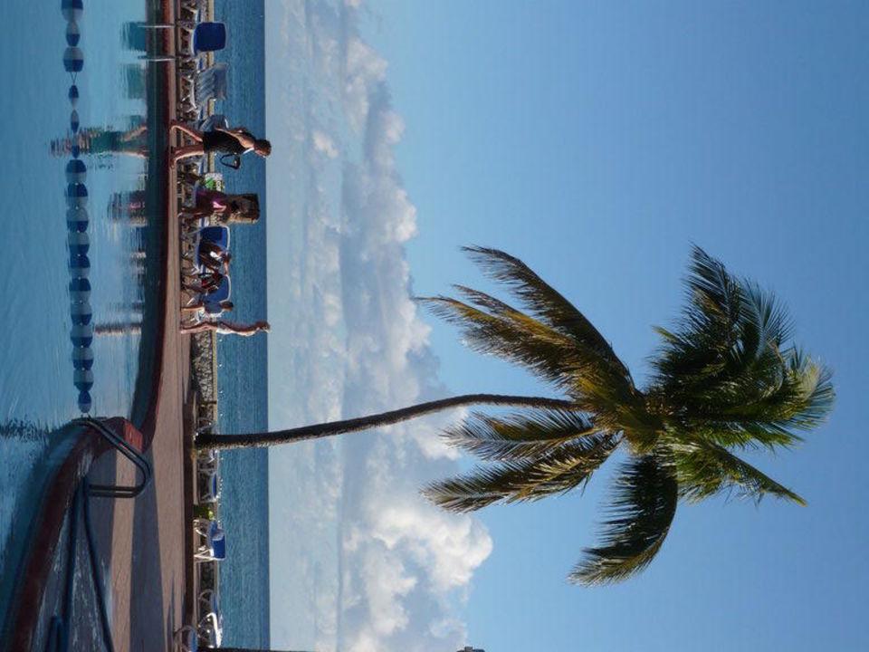 Poolblick aufs Meer Hotel Royal Decameron Club Caribbean