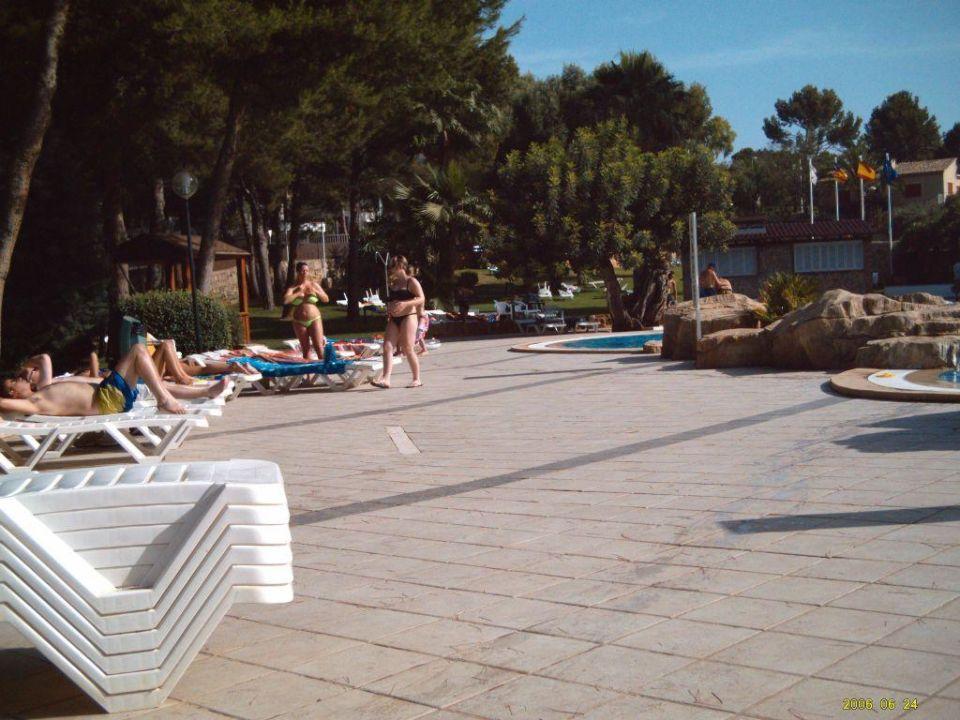 Am Pool BQ Belvedere Hotel