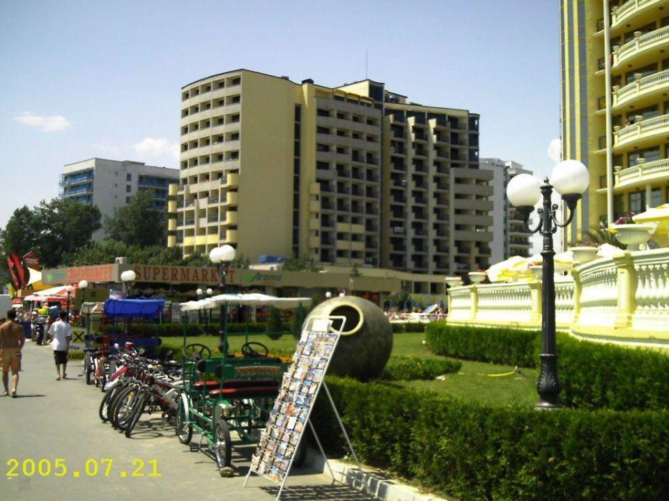Hotel Beach Hotel Bellevue