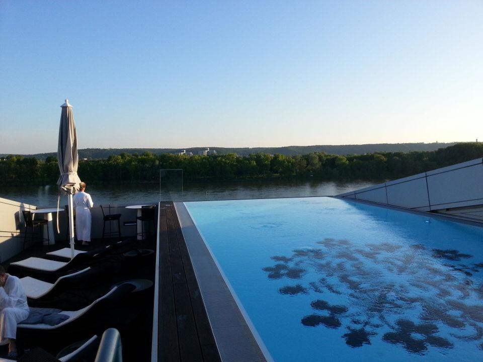 blick vom pool auf den rhein hotel kameha grand bonn. Black Bedroom Furniture Sets. Home Design Ideas