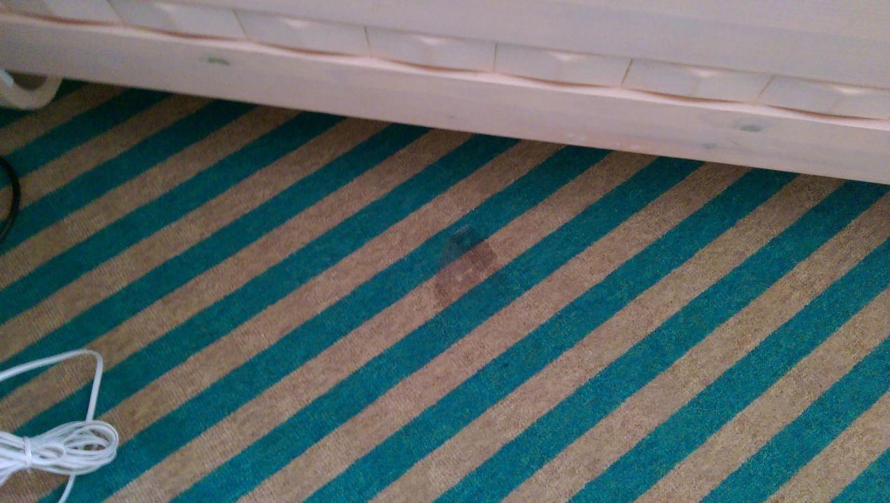 Bild Teppich einfach Flecken ( Eckelig ) zu Lindner