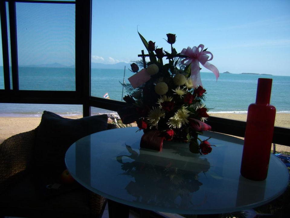 Blick aus dem Zimmer B1 Villas & Spa