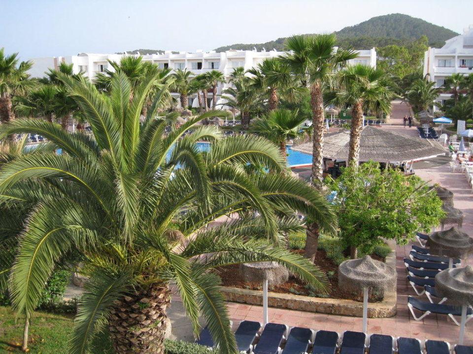 Ausblick vom Zimmer Grand Palladium White Island Resort & Spa