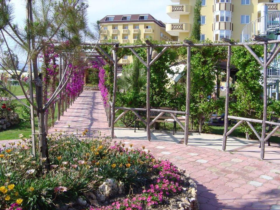 Hotel Garten Hotel Titan Garden