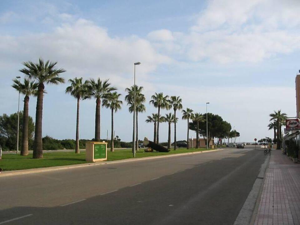 Blick in Richtung Strand allsun Hotel Orient Beach