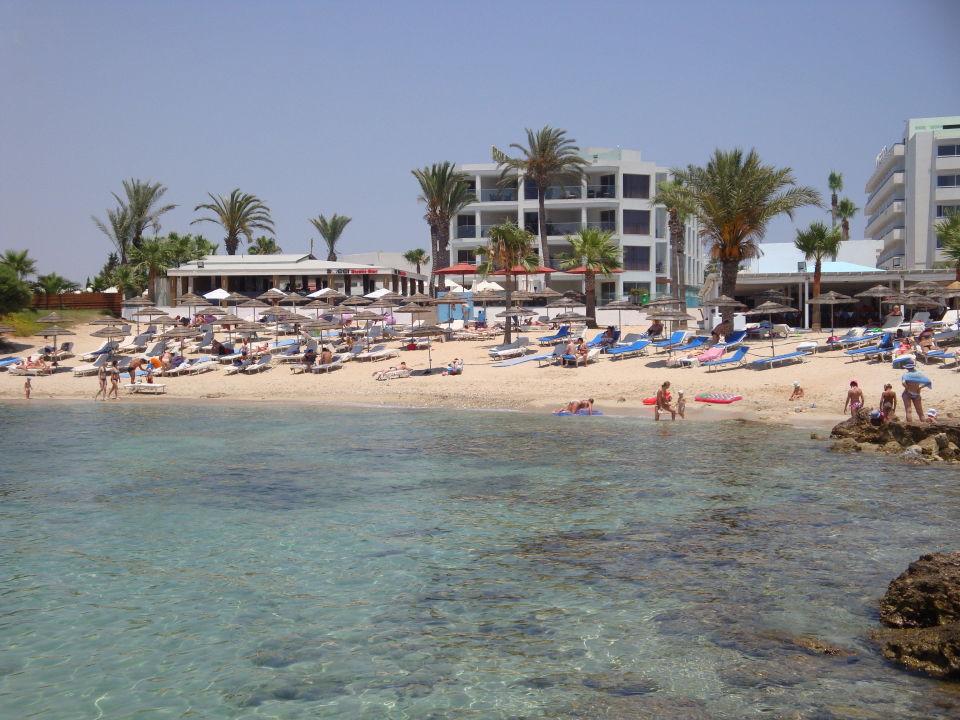 Am Deluxe Wing Adams Beach Hotel Agia Napa Ayia Napa