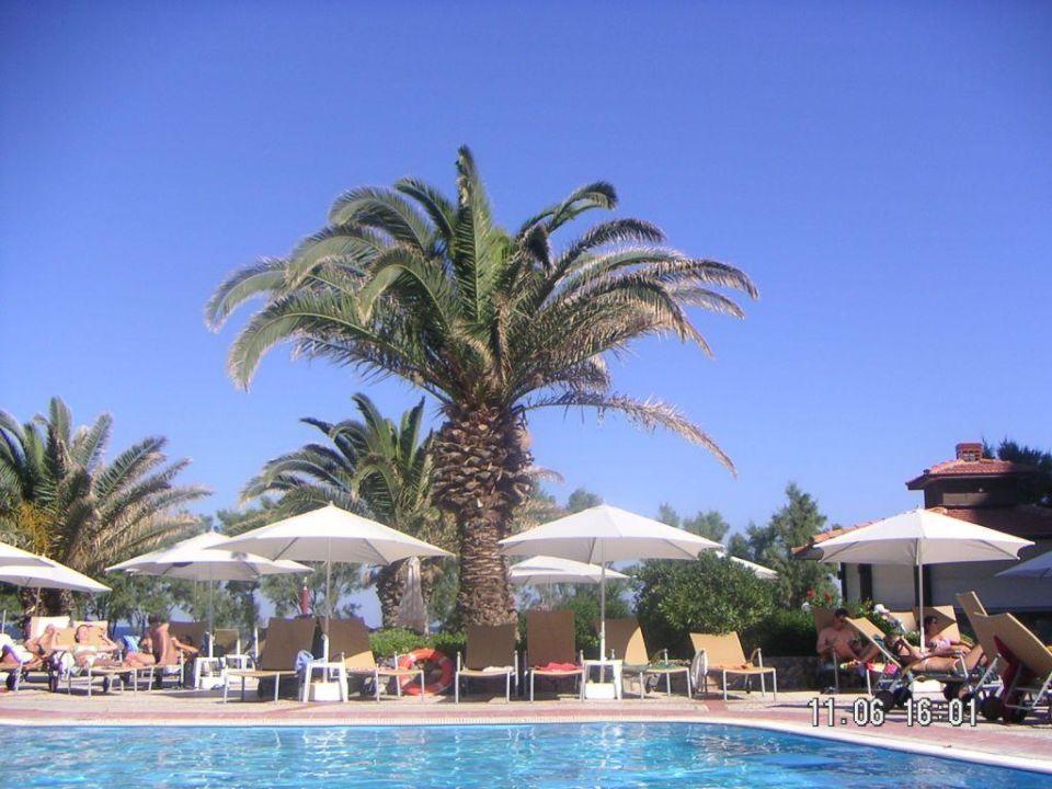 Pool! Hotel Louis Colossos Beach (Vorgänger-Hotel – existiert nicht mehr)