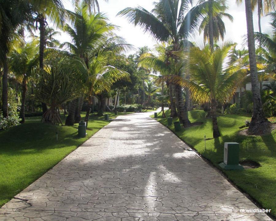 Hotel Paradisus Punta Cana Resort Paradisus Punta Cana Resort
