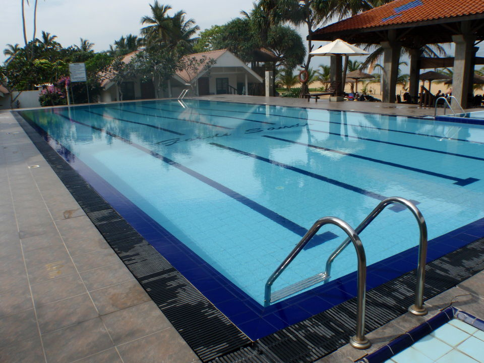 Pool Hotel Goldi Sands