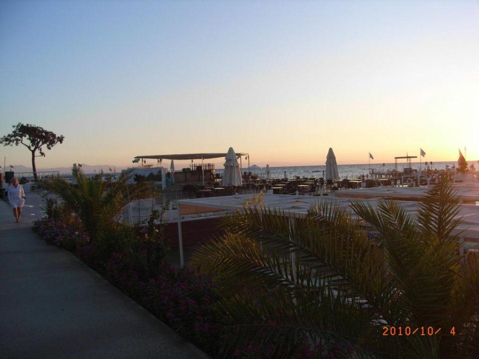 Morgens am Strand Hotel Mirada del Mar