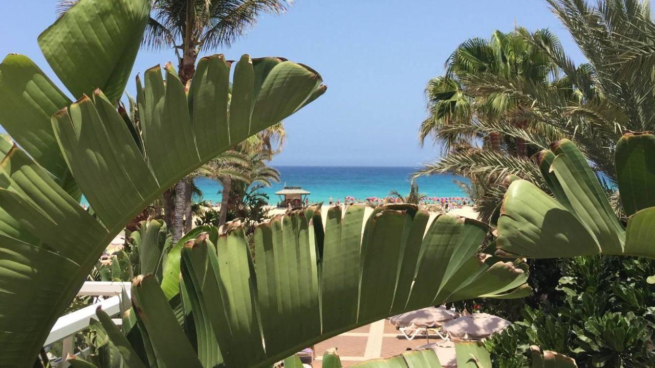 Widok na pla e hotel riu oliva beach village for Riu oliva beach village