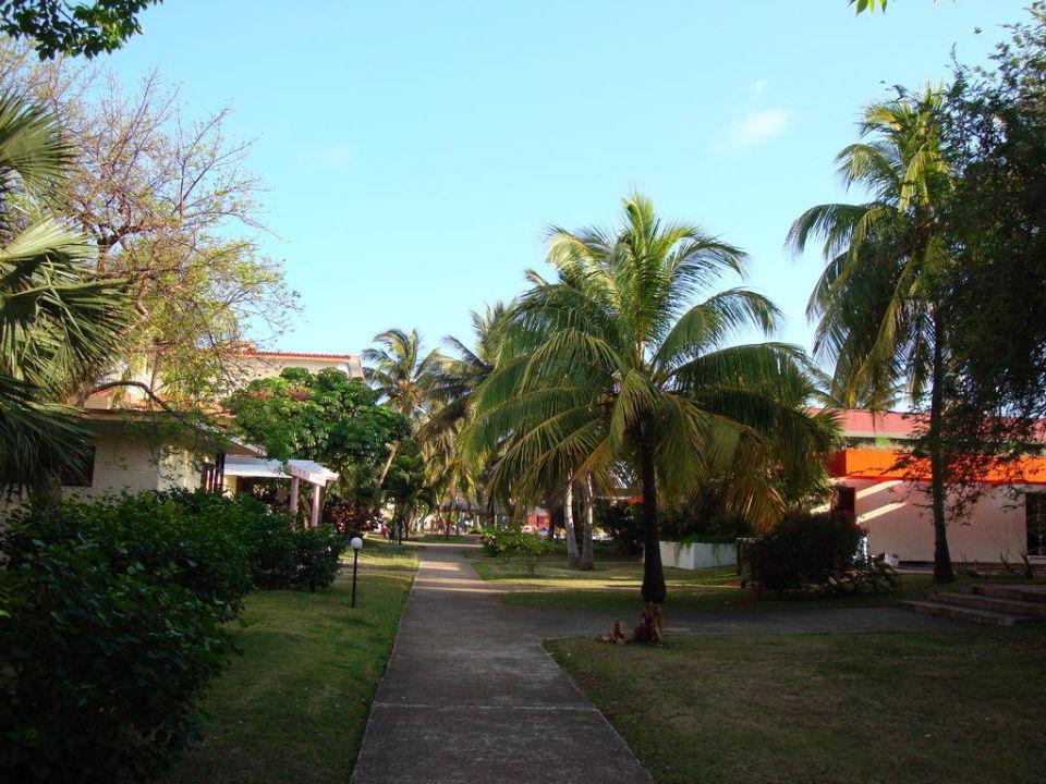 Alejka do plaży Gran Caribe Villa Tortuga