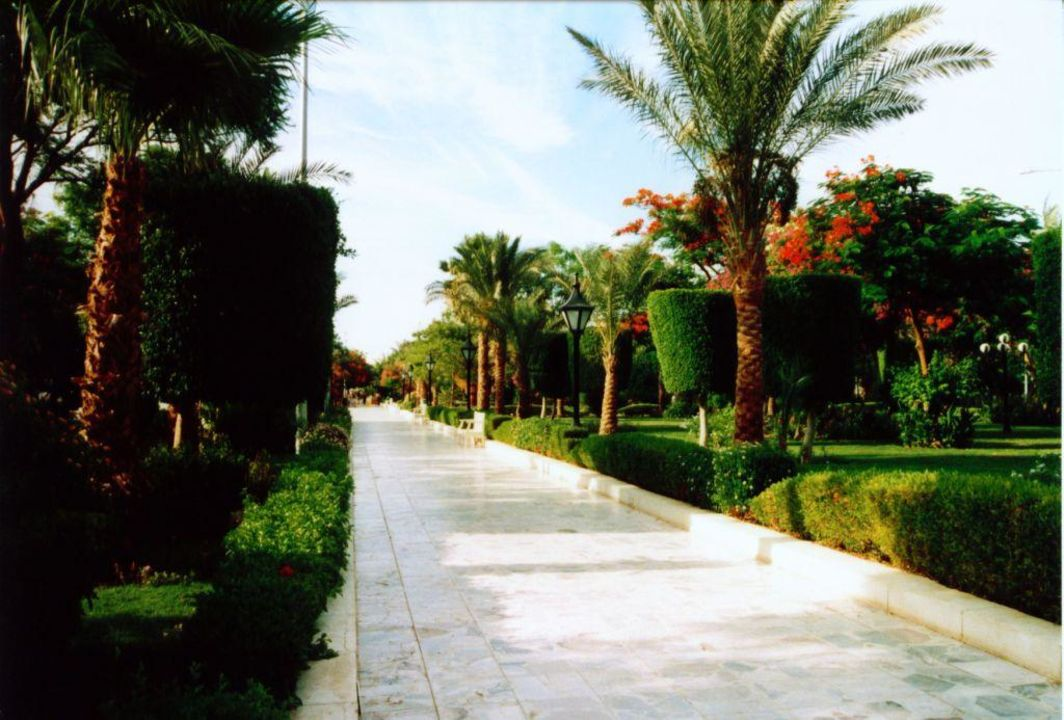 Garten The Grand Hotel Hurghada