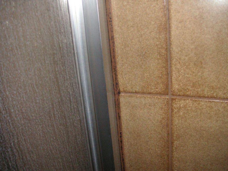 bild schimmel in der dusche zu hotel steiglehof in horb. Black Bedroom Furniture Sets. Home Design Ideas